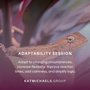 adaptability session