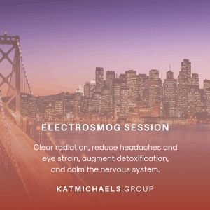 electrosmog session